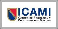 Cliente ICAMI